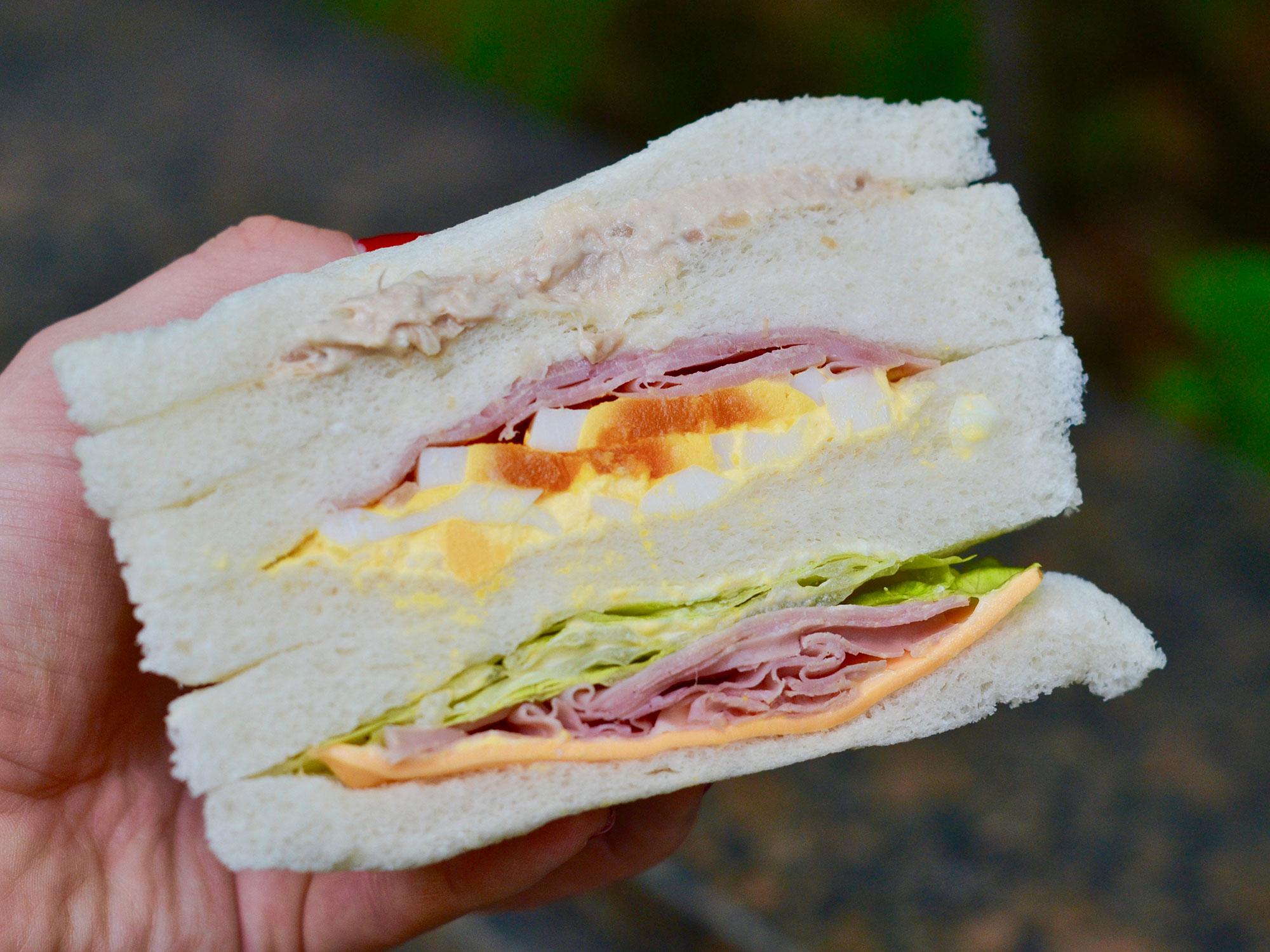 sandwich-1-7-11.jpg