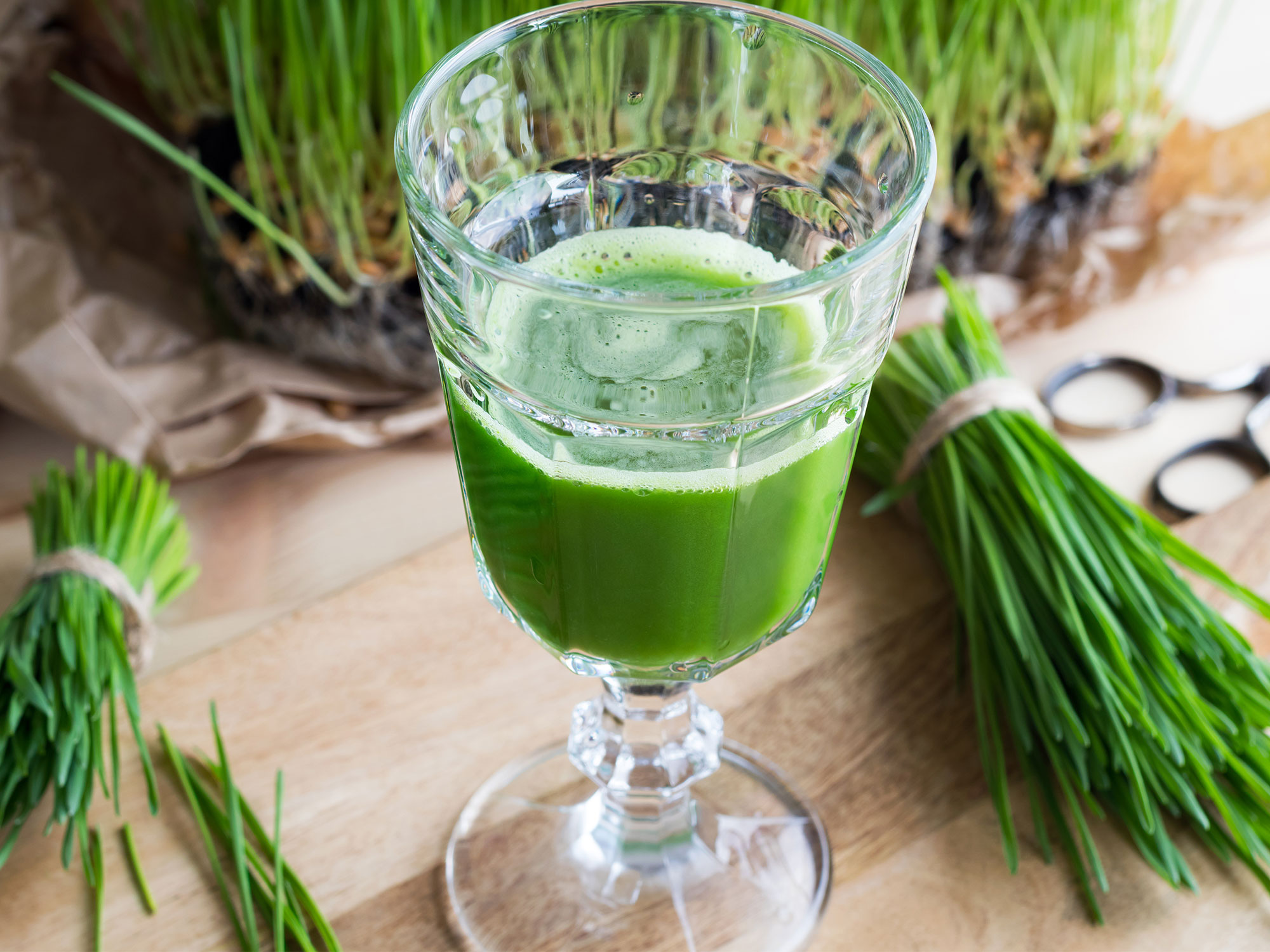 is-wheatgrass-gluten-free.jpg