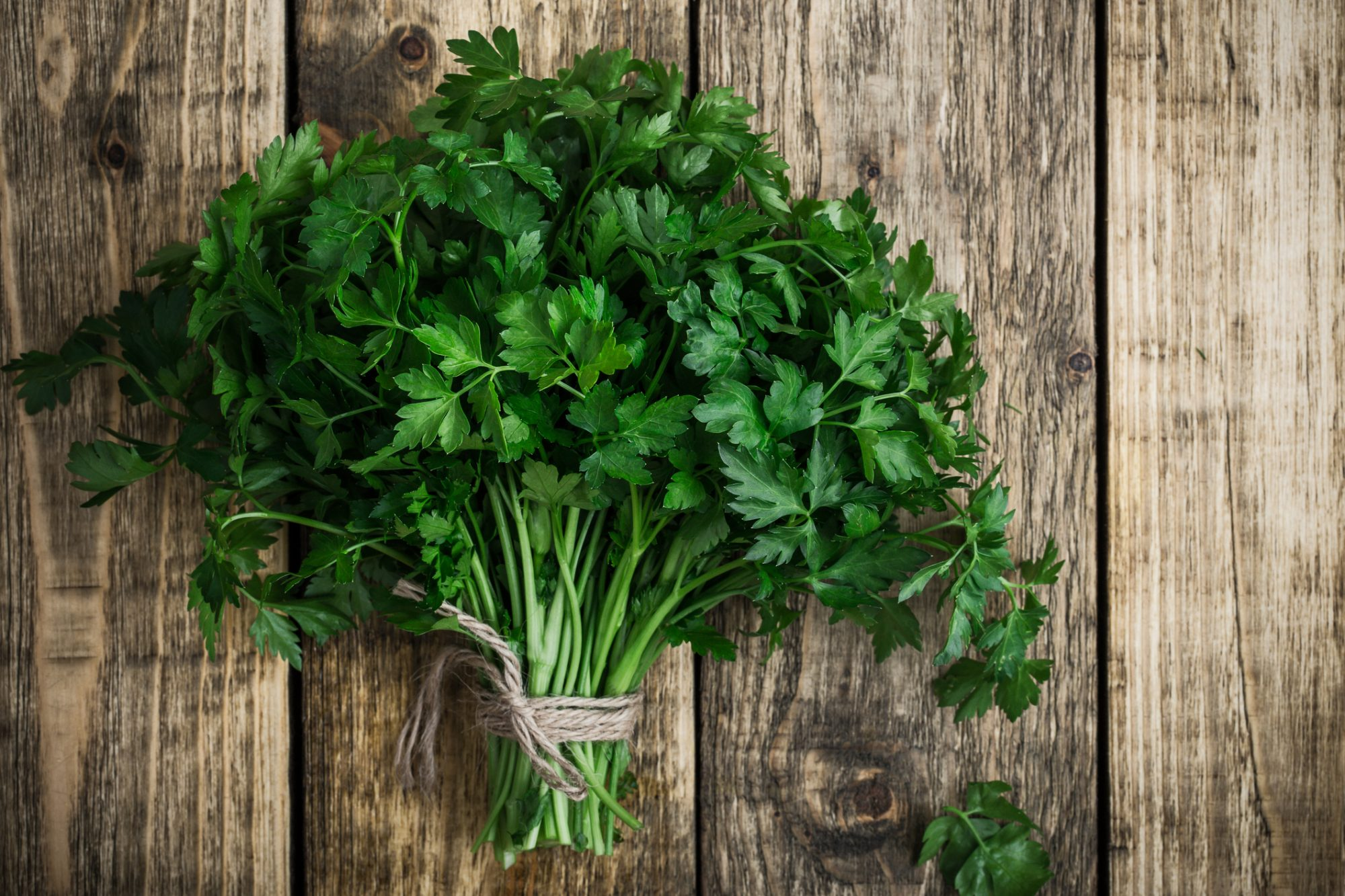 Fresh organic parsley over wooden background viewed from above