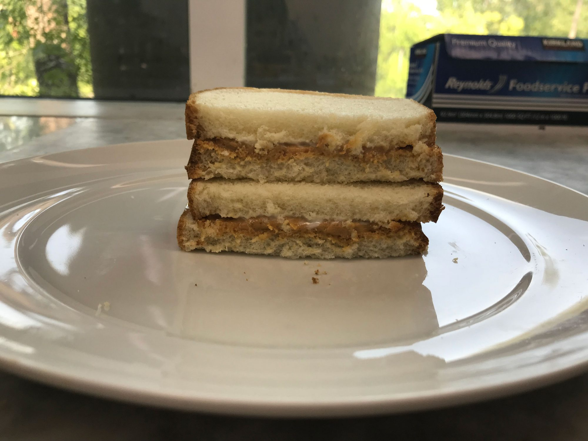 peanut butter and mayonnaise sandwich
