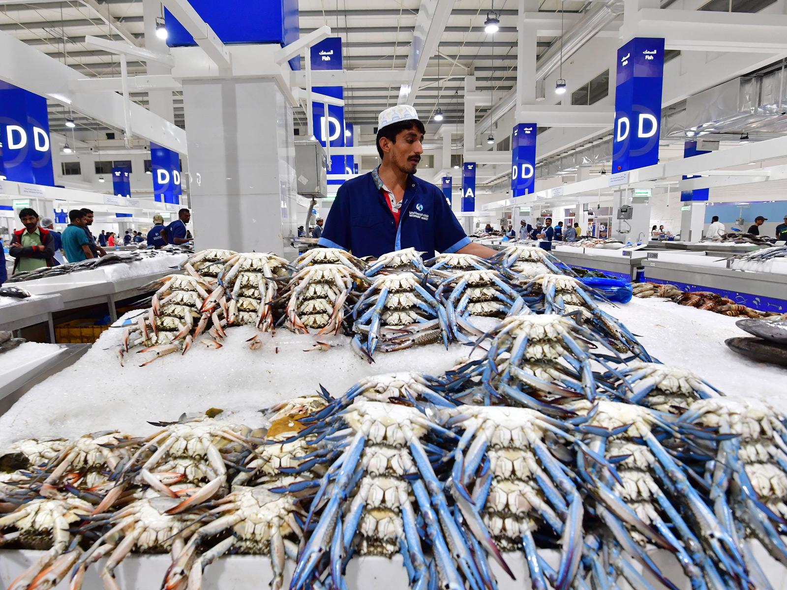 dubai-fish-market.jpg