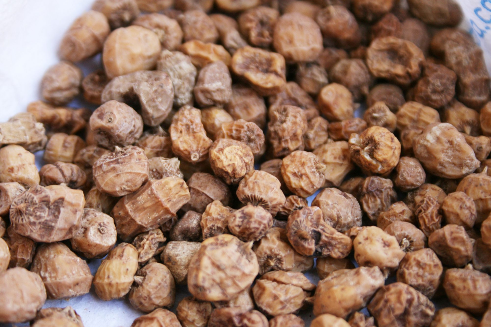 tiger nuts image