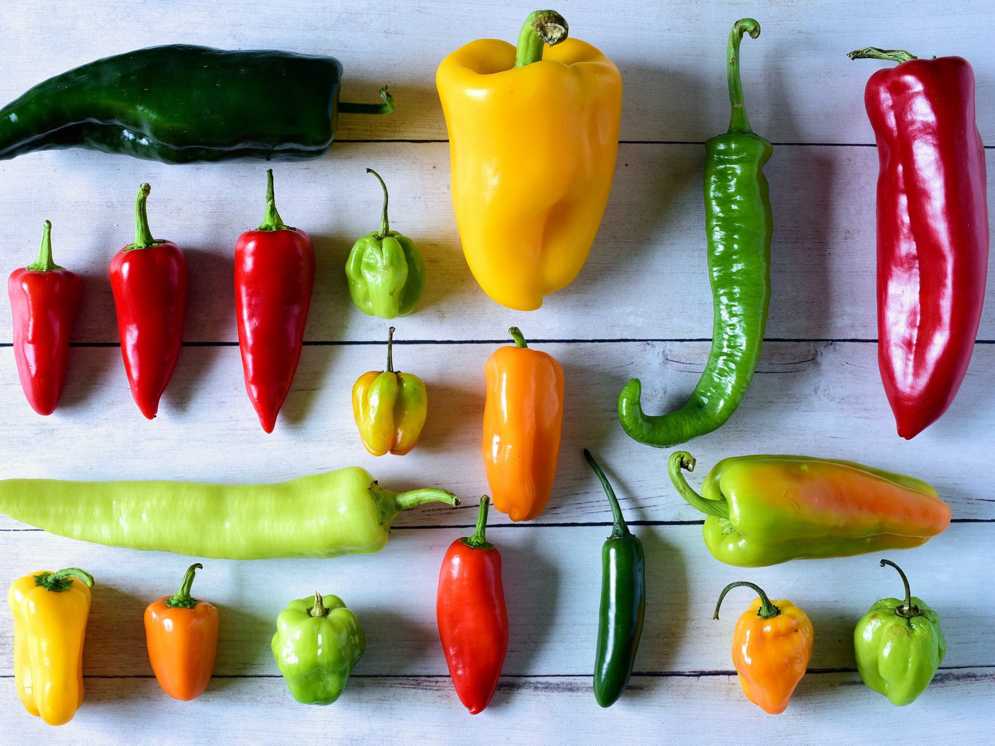 Your Guide to the 10 Chile Peppers Most Likely to Show Up in a Recipe