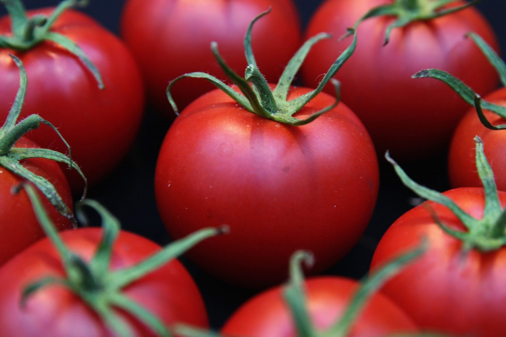 How to Cook With Out-of-Season Tomatoes