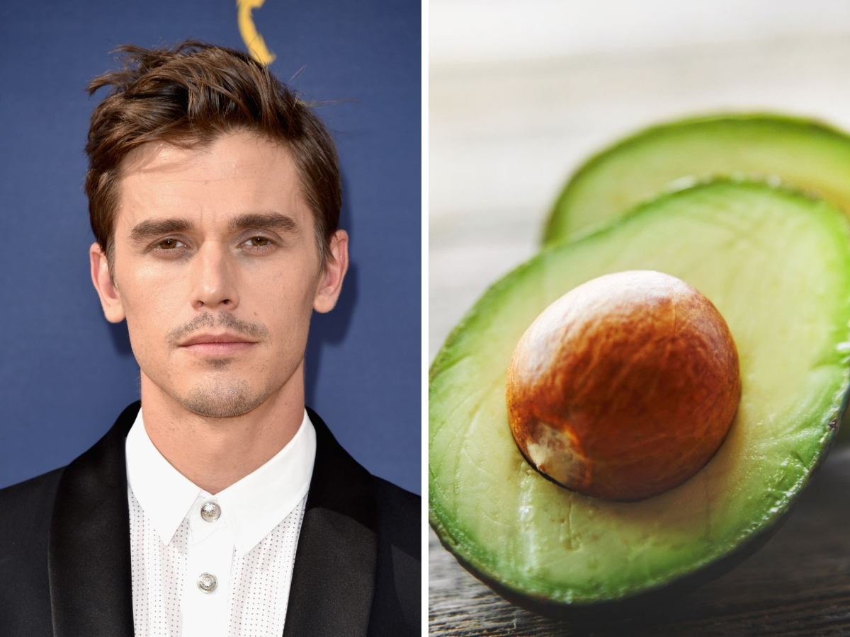 antoni and avocado