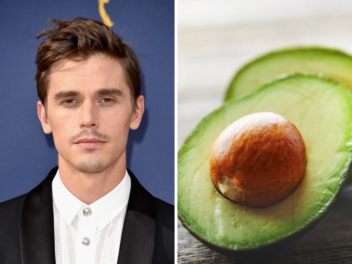 antoni and avocado