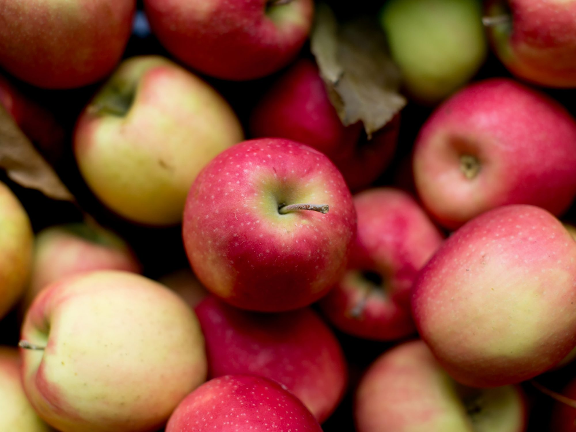 Why Are People Not Eating Apples Anymore?