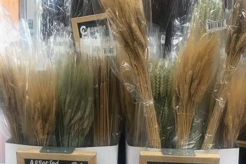 Dried Natural Wheat Bundles