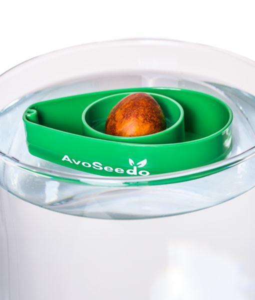 Avocado Lover Gift Box