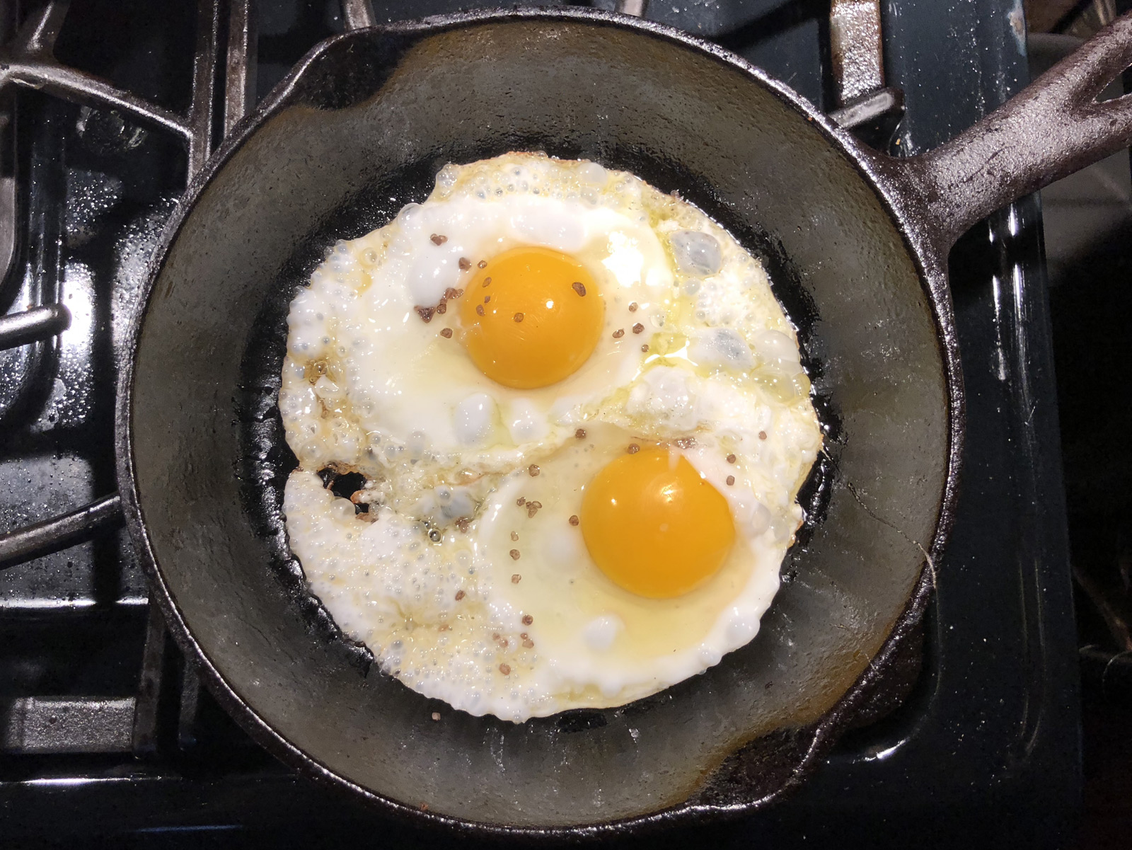 I Brought My Cast-Iron Skillet Back to Life, Now What Do I Cook?