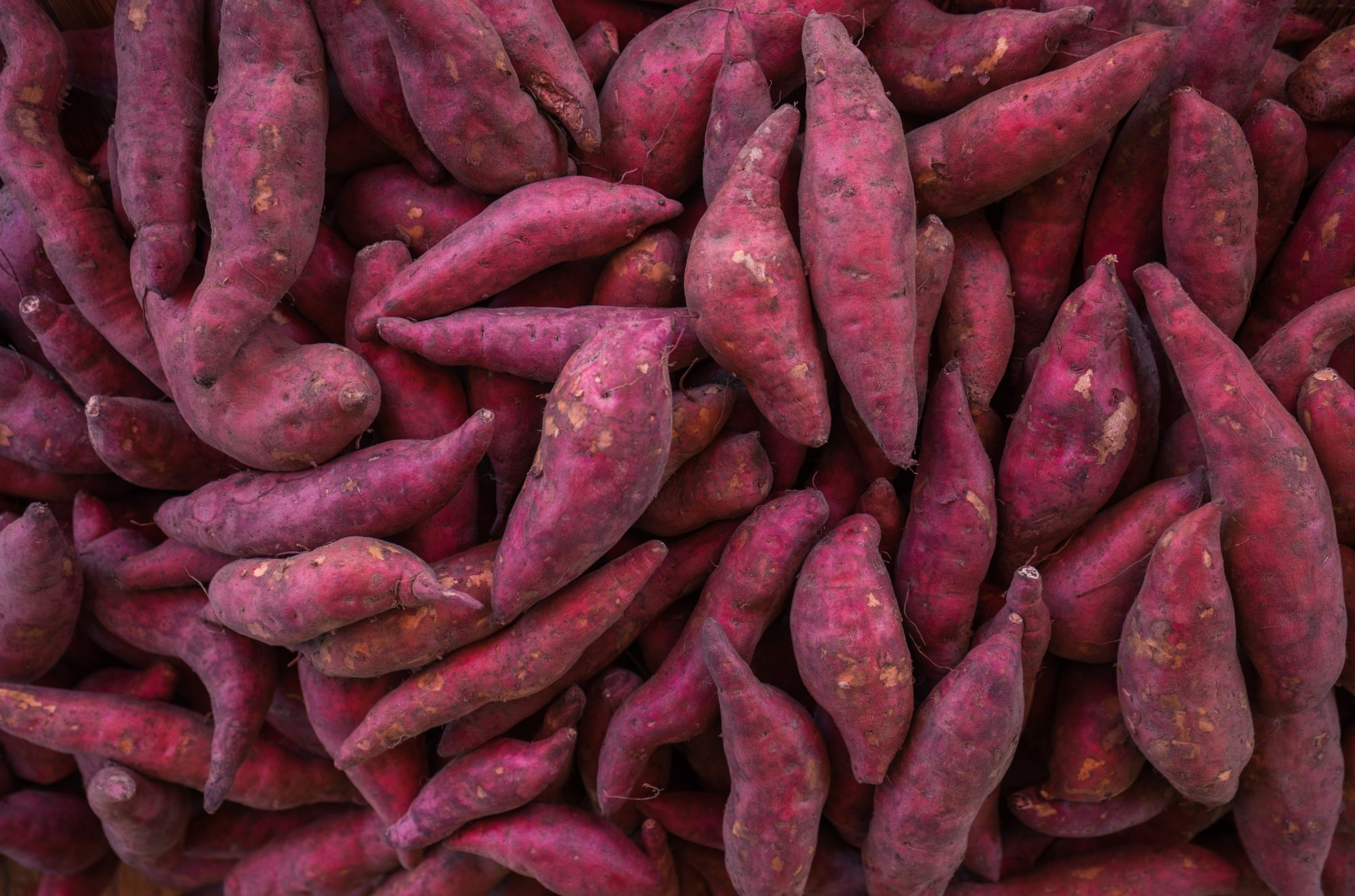 Sweet Potatoes vs. Yams, and 11 Other Food Pairs You Probably Confuse