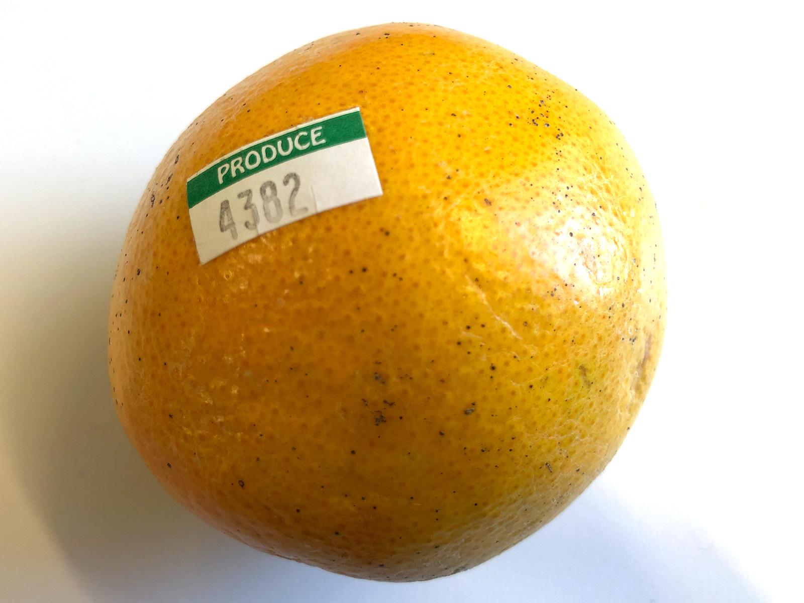 4382-grocery.jpg