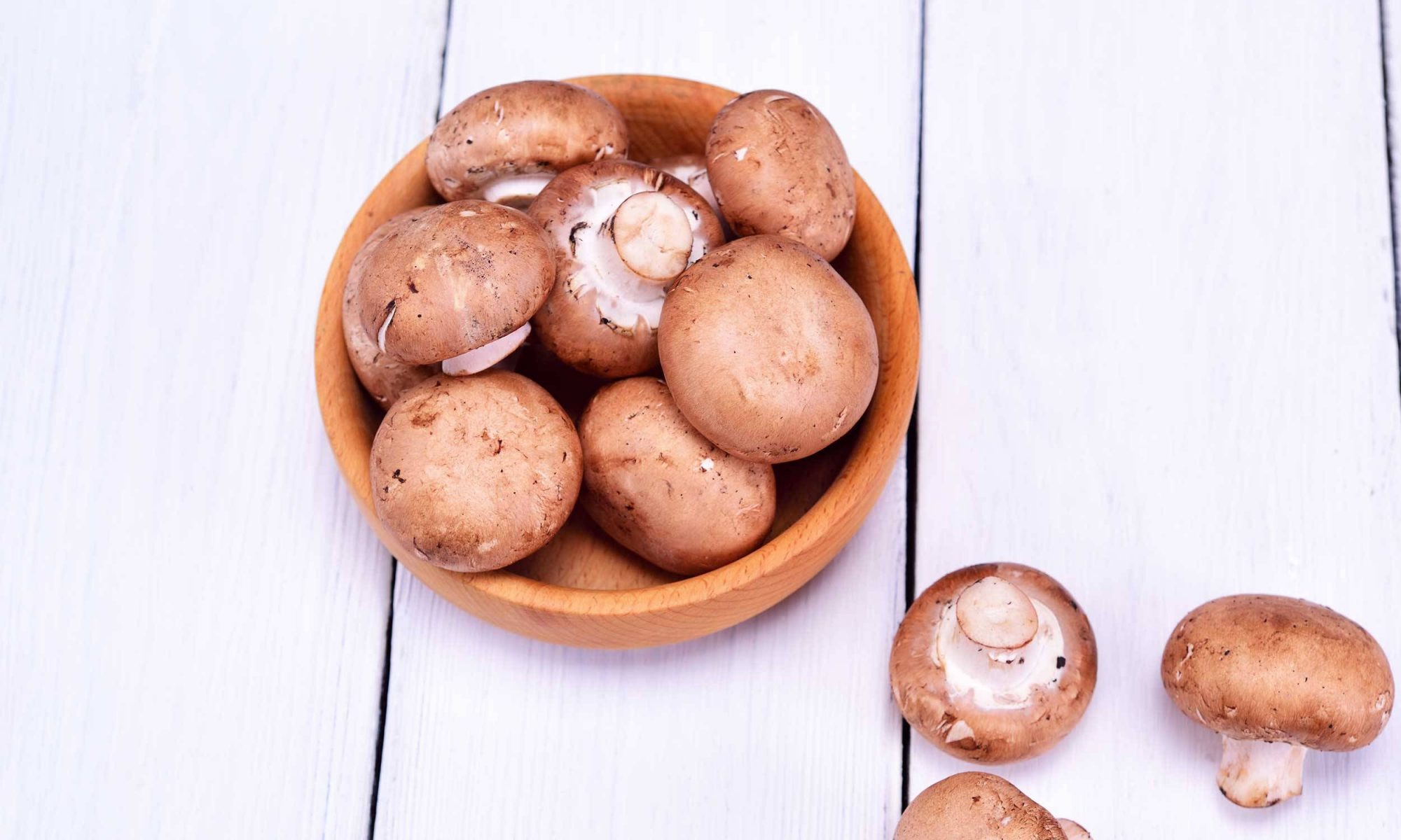 Secrets of cooking champignons fresh and frozen