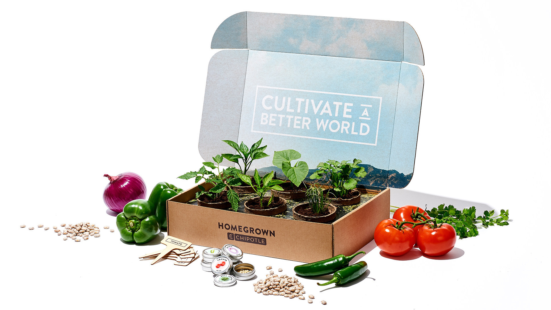 You Can Buy Your Own 'Home Grown Chipotle' Garden Box—Here's How