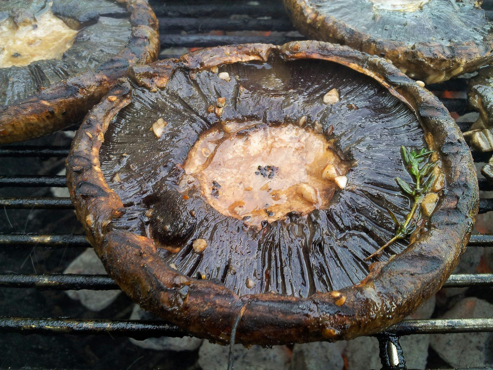 portobello_mushroom.jpg