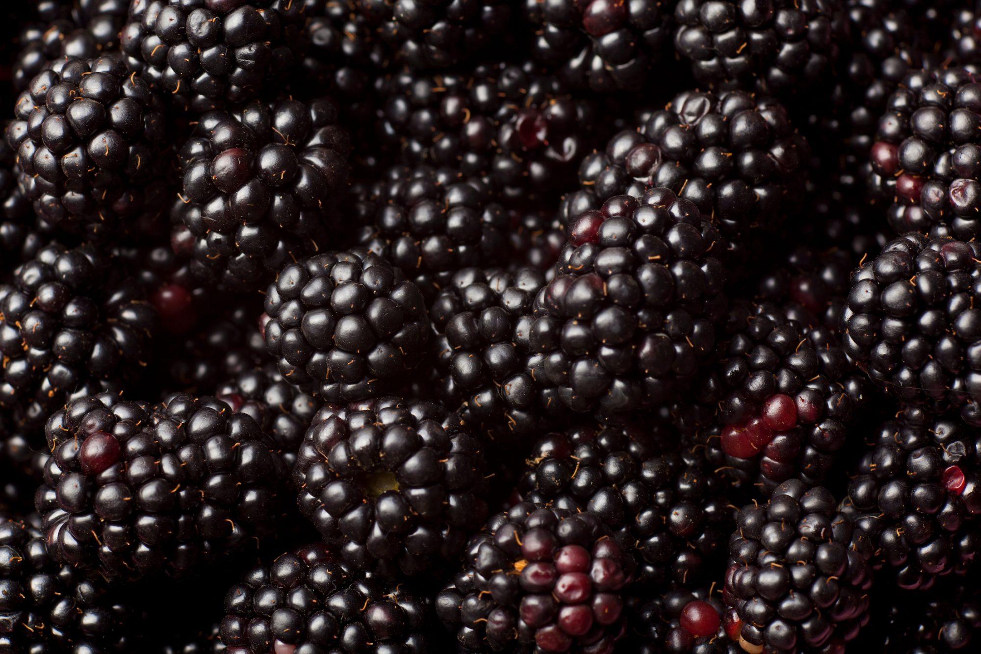 gettyblackberries.jpg