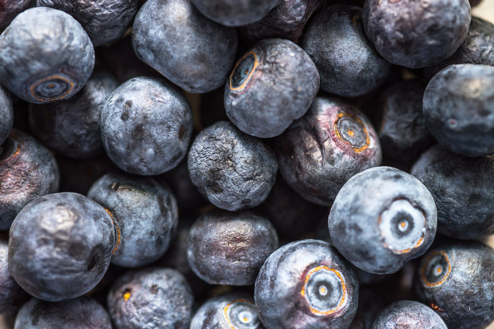 gettyhuckleberries.jpg