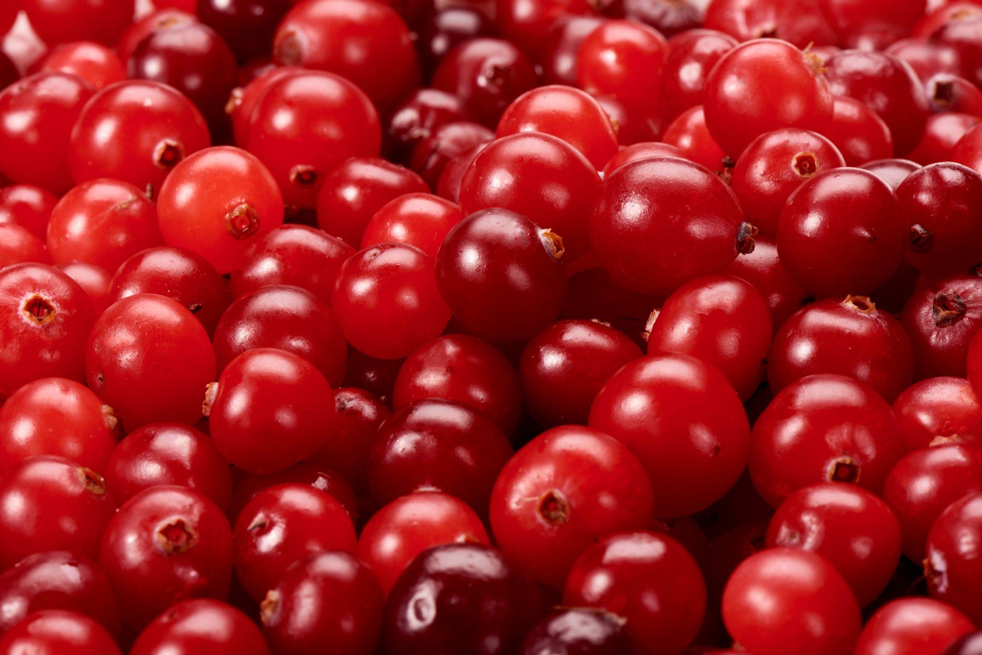 gettylingonberry.jpg
