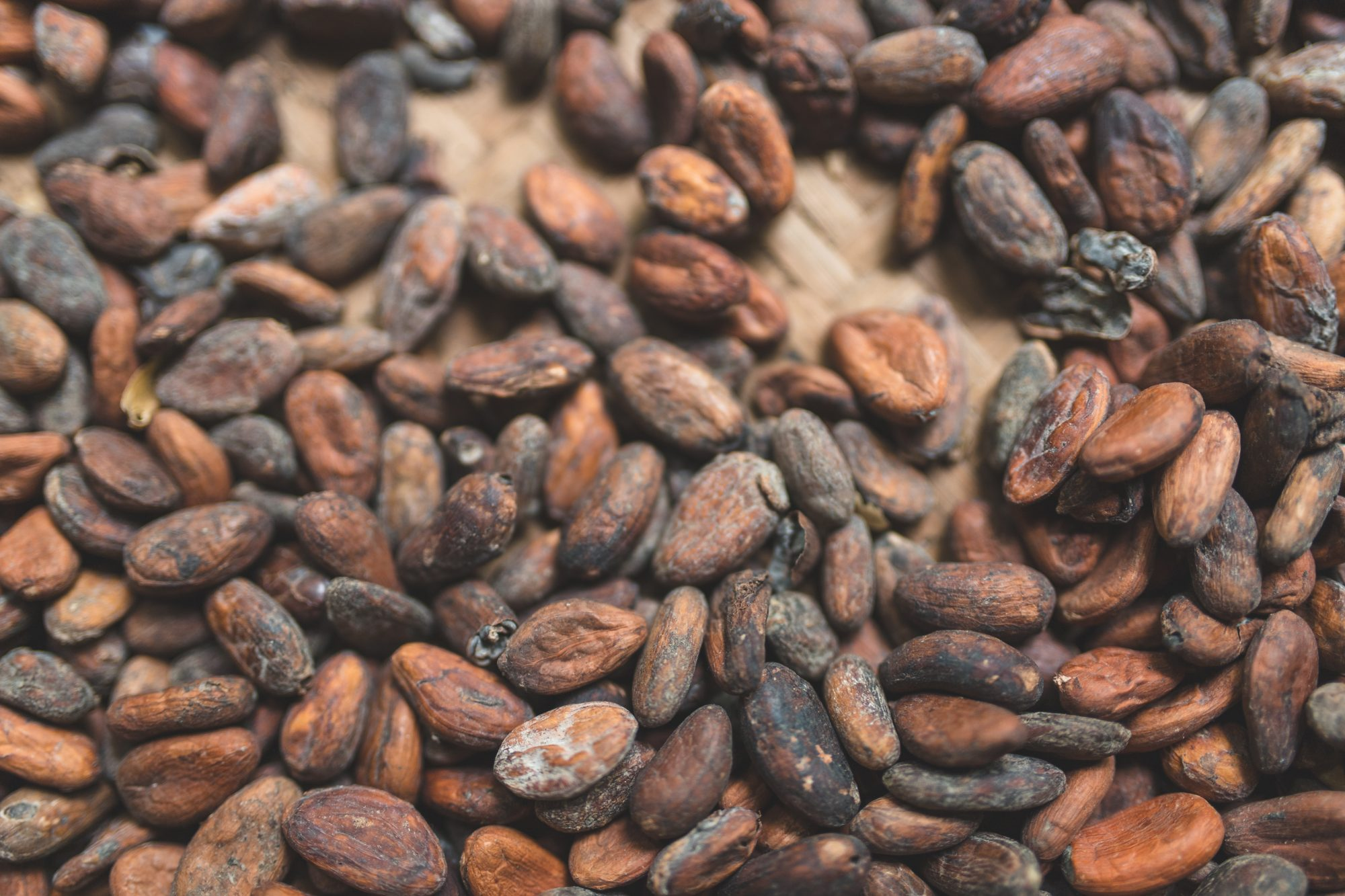 Getty Cocoa Beans 8/8/19