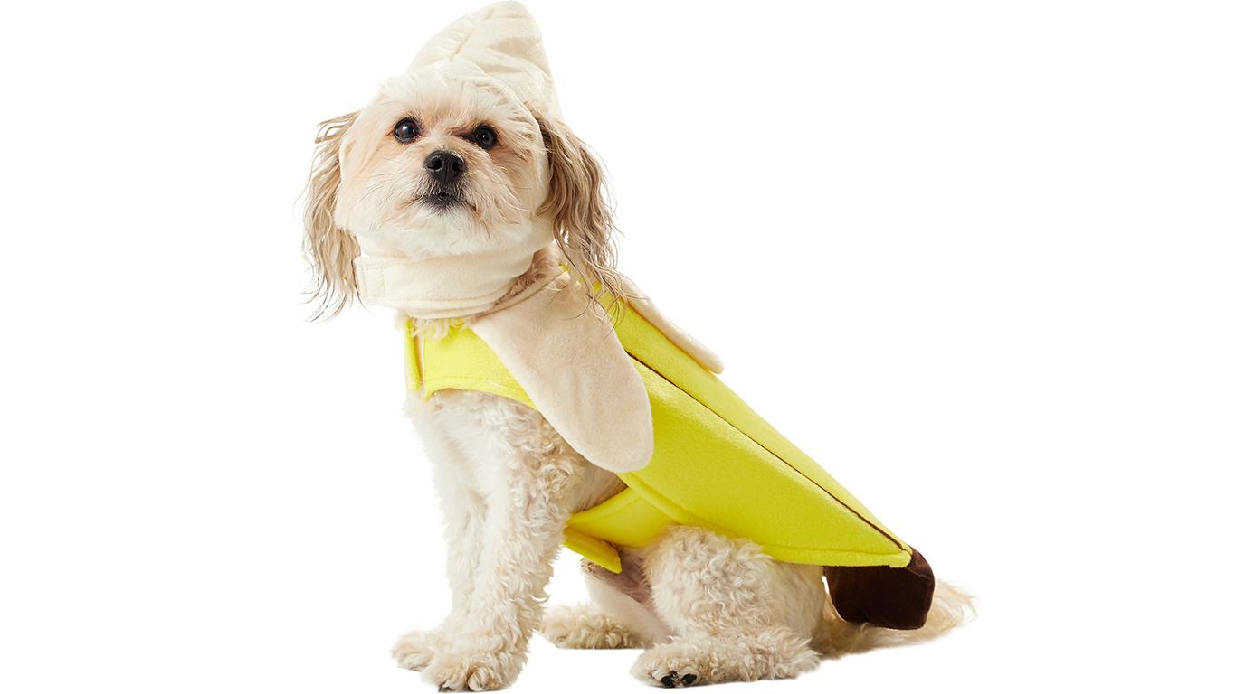 dog-banana