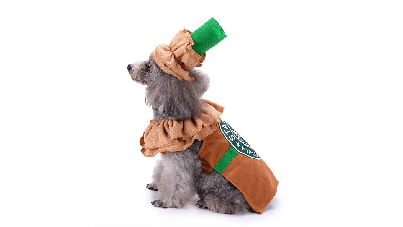 dog-latte