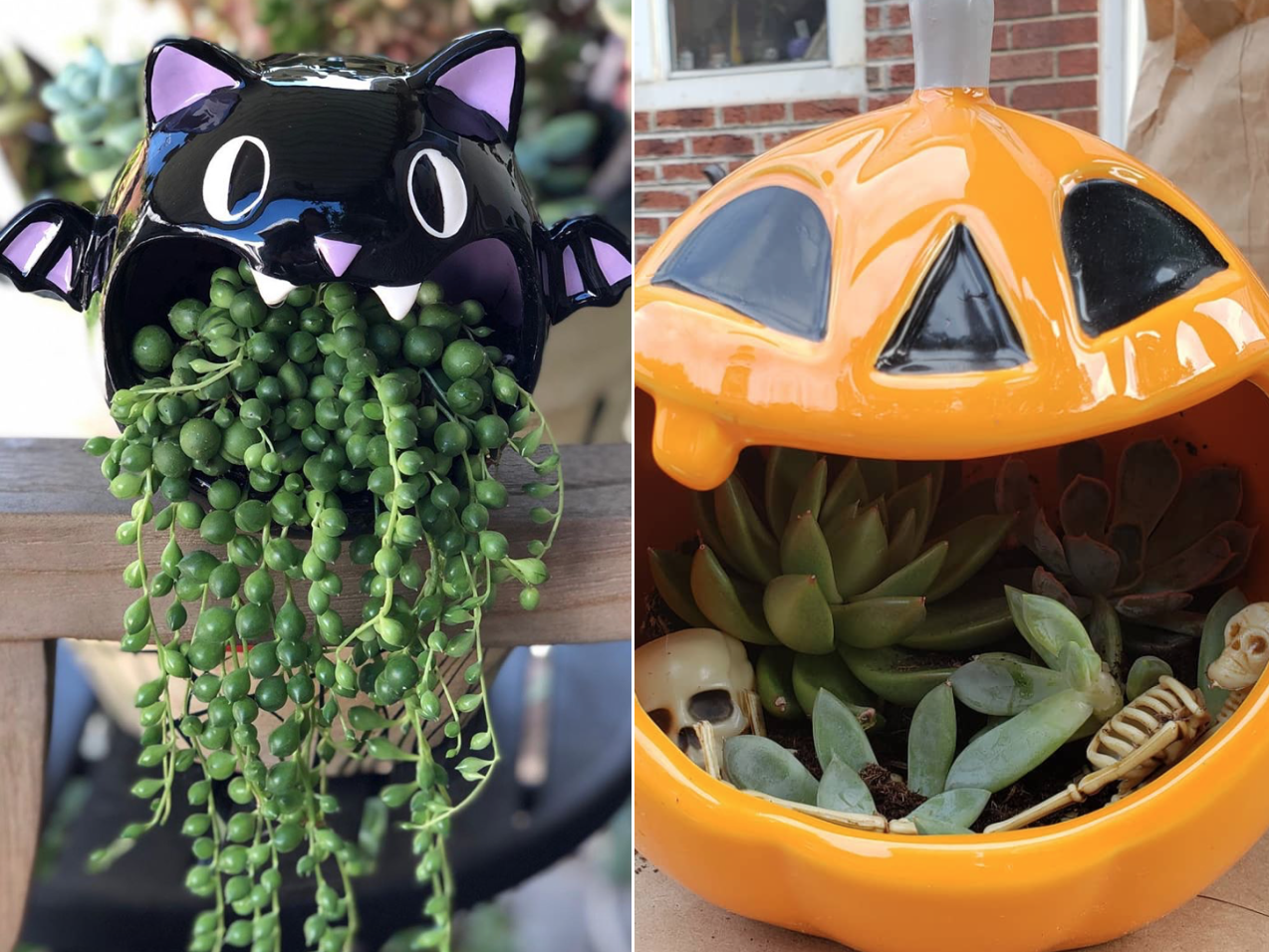 People Are Turning Target's Halloween Candy Dishes Into Succulent Planters