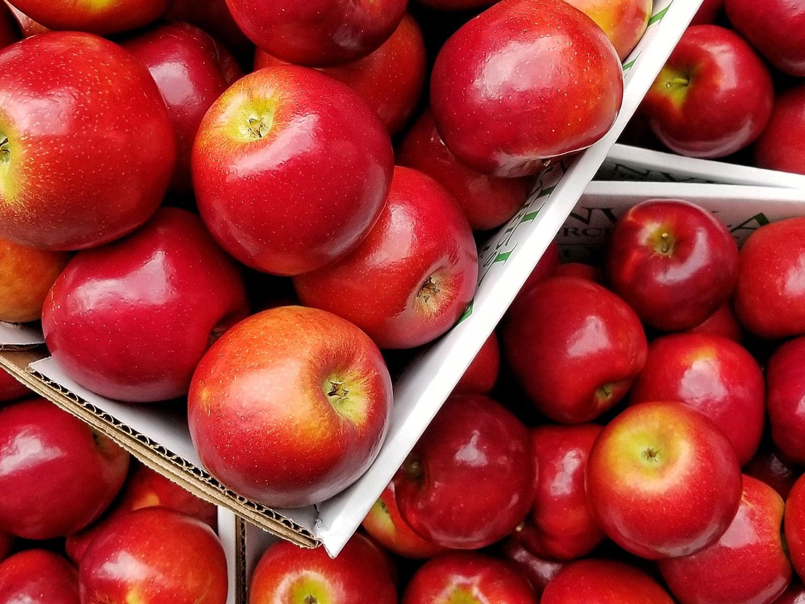 how to keep apples fresh longer