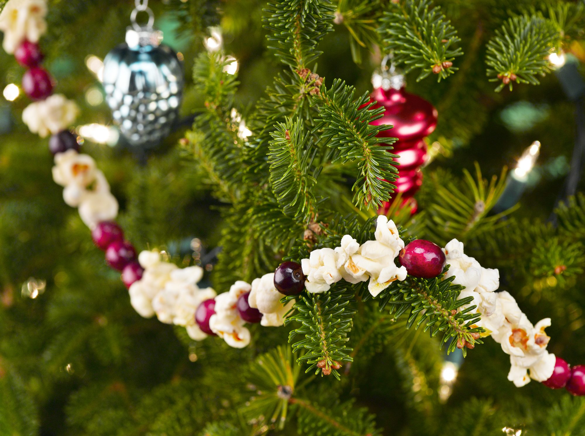 Close-up of a Christmas tree with popcorn and cranberry garland.