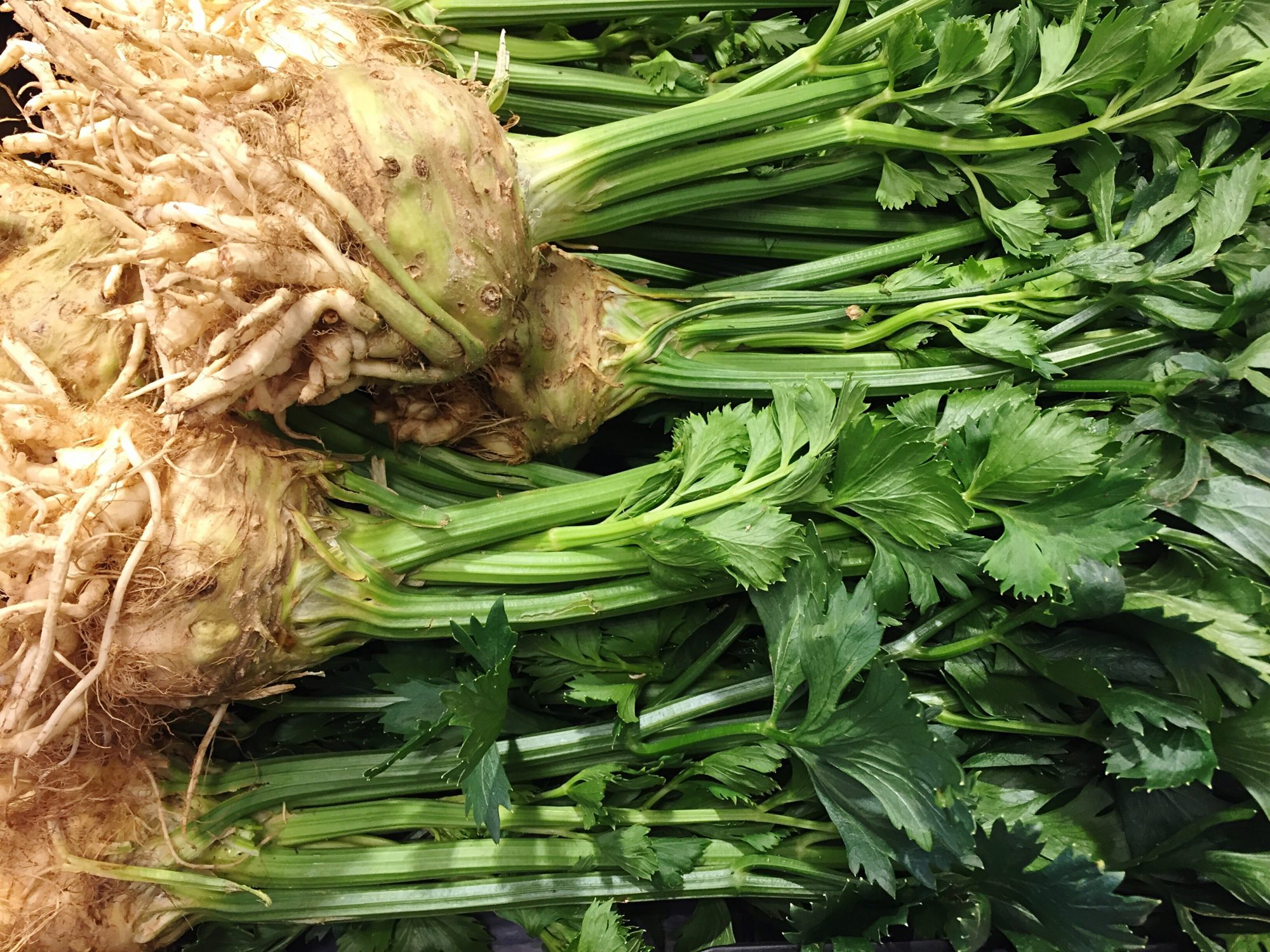 Celeriac with Stalks Getty 11/26/19