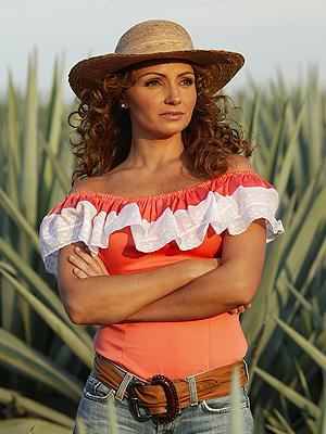 Angélica Rivera, Destilando amor, Antes y después telenovelas
