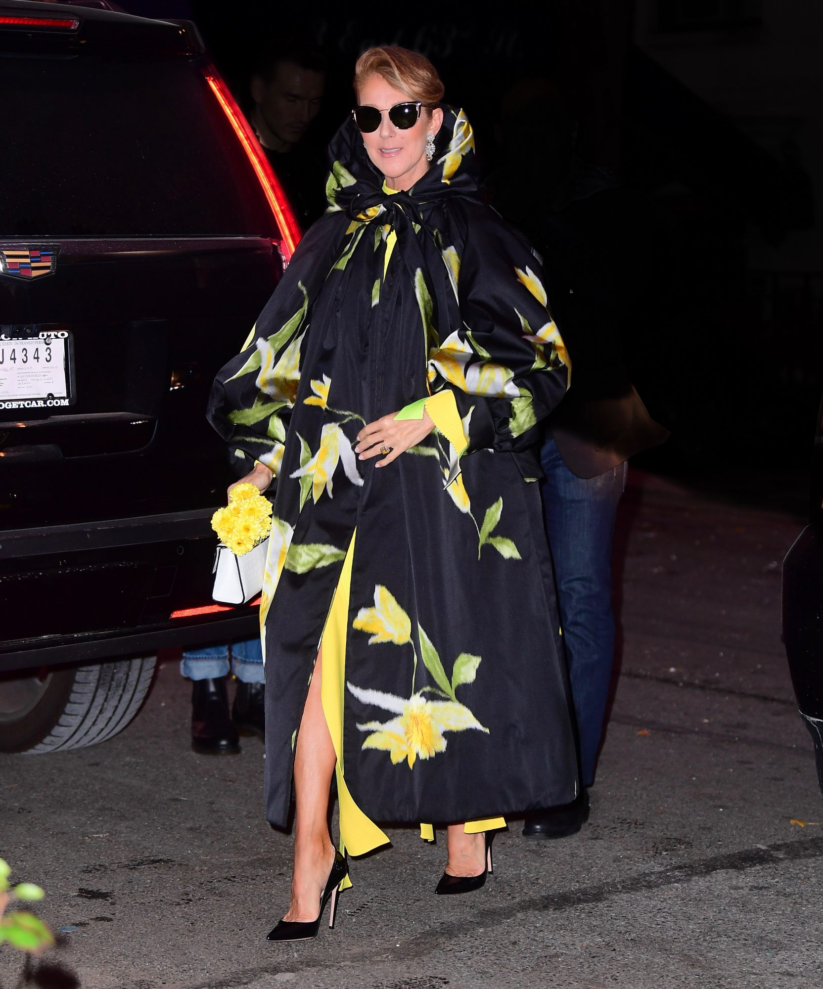 Celine Dion, looks, new york