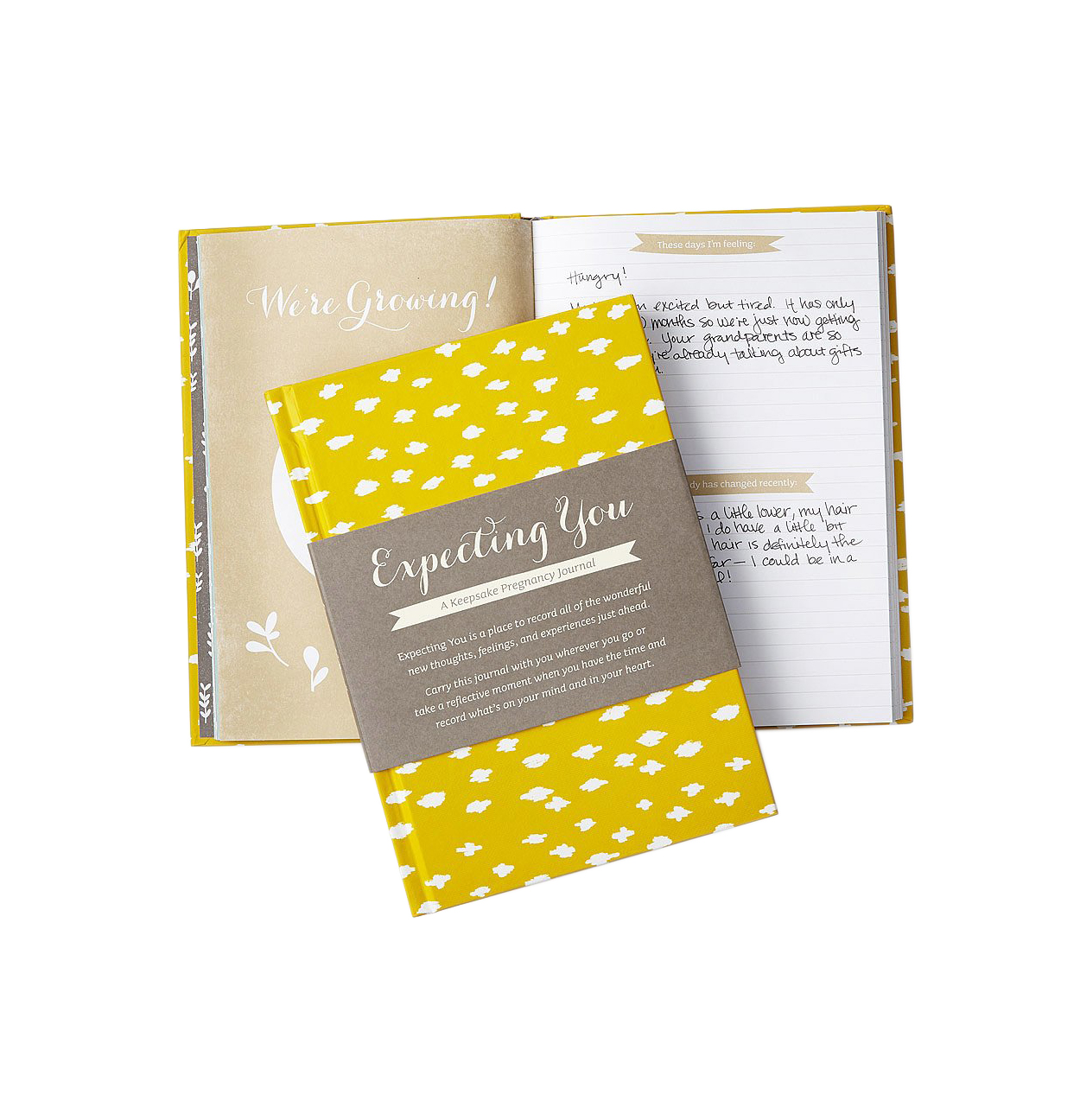 Keepsake Pregnancy Journal