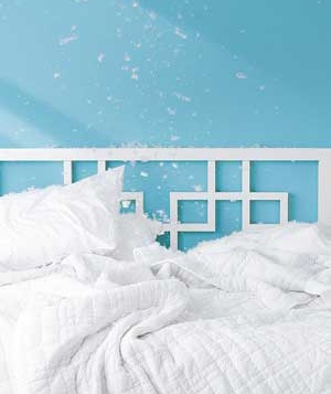 Bed and feather pillows