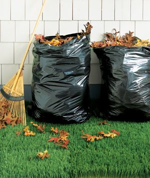 Two garbage bags full of leaves