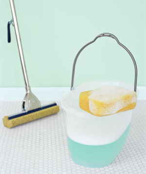 Mop, sponge, and a bucket of soapy water