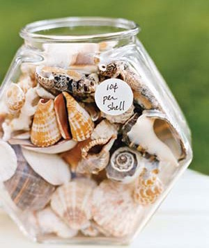 Seashells in a fishbowl