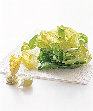 How to Trim Spring Lettuce