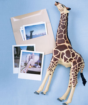 photos next to a giraffe statue