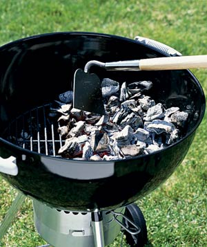 Grill Debate: Gas vs. Charcoal