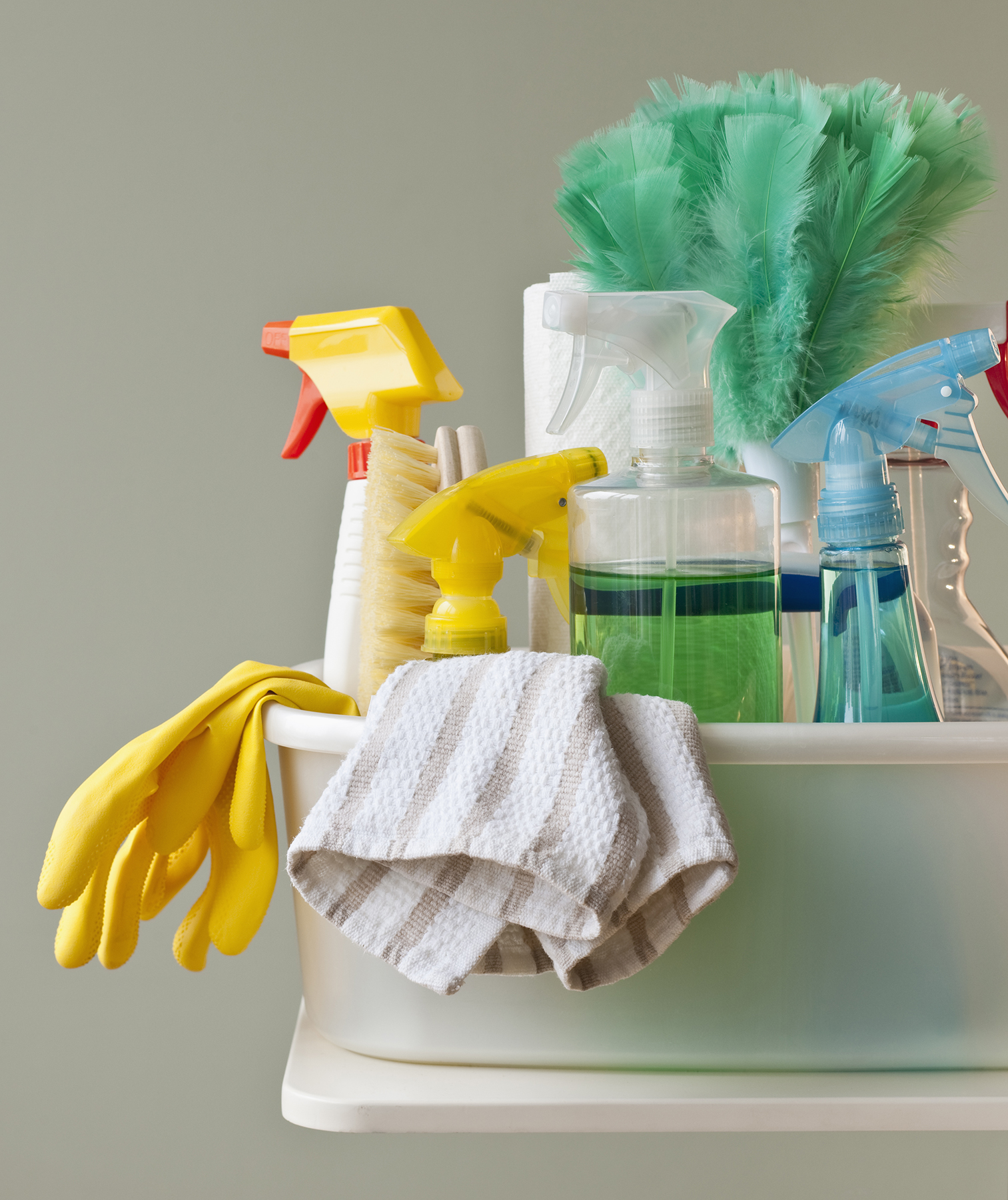 Cleaning supplies and dish towel