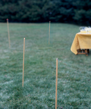 16 Tips For An Effortless Outdoor Party Real Simple