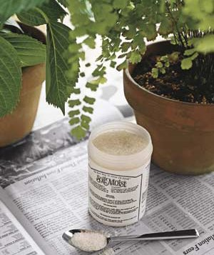 Potted plants on newspaper with jar of Soil Moist