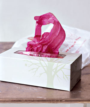 Tissue Box as Plastic Bag Holder