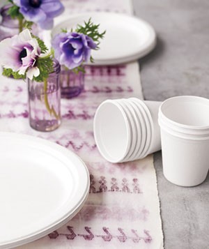 Bagasse Recyclable Plates and Cups, $5.50 to $9 for 50