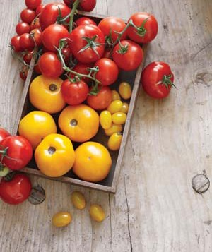 Yellow and red tomatoes in a crate