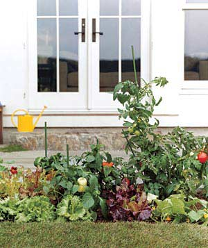 Easy Gardens For Small Spaces Real Simple