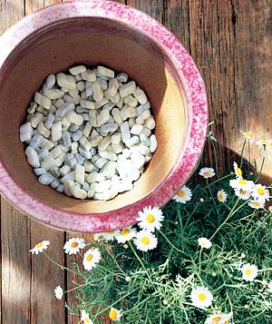 Styrofoam peanuts in a pot