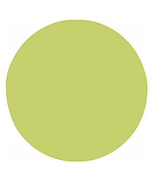 Benjamin Moore Aura in Pear Green