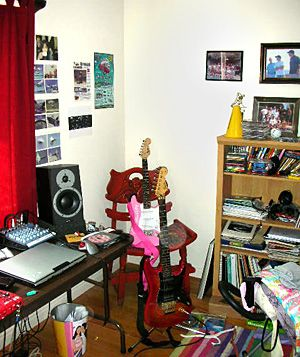 Music room in Gina Alexander's home