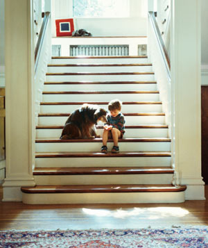 Small boy on a wide stairway with a dog licking his hand